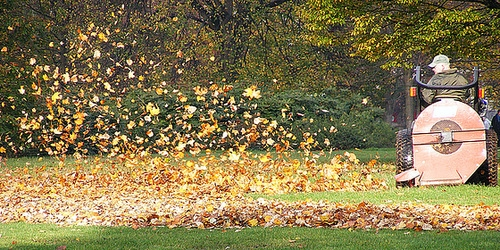 Autumn_500